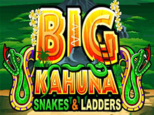 Big Kahuna Snakes and Ladders от Microgaming на зеркале